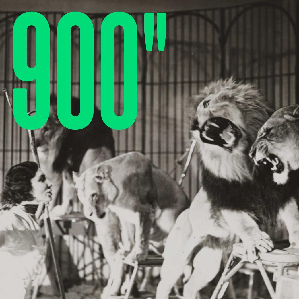 900 secondes - Le Circuit